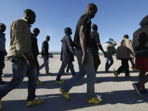 migrants pic 01