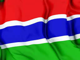 Gambia flag good one